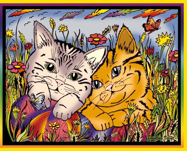 Samtbild, Color Velvet, Mittel, ca. 37x28cm, Kätzchen