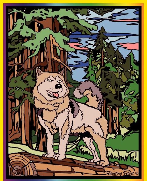 Samtbild, Color Velvet, Mittel, ca. 37x28cm, Wolf im Wald
