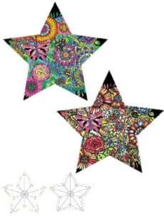 Samtbild, Color Velvet, 3D-Stern, ca. 50x50x8cm, Blumen