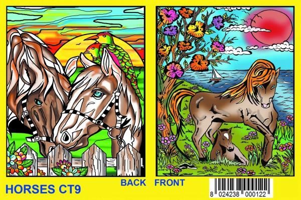 Elastic-Sammelmappe mit Samtbildern, Pferde