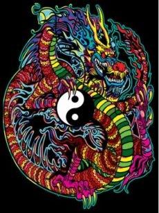 Samtbild, Color Velvet, Groß, ca. 47x35cm, Drache Yin-Yang