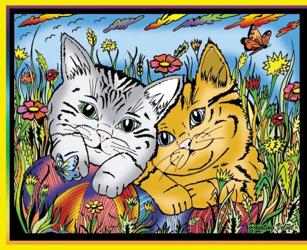 Samtbild, Color Velvet, Mini, ca. 30x21cm, Katzen